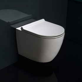 Hangend toilet closetzitting 52x36cm met softclose toiletbril - WD385P Eago