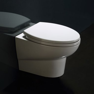 Hangend toilet closetzitting 55x35cm met softclose toiletbril - WD379P Eago
